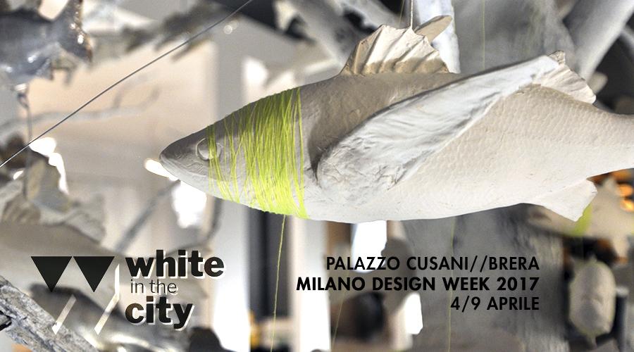 #whiteinthecity #amaaro #palazzocusani #breradesigndistrict #MDW2017